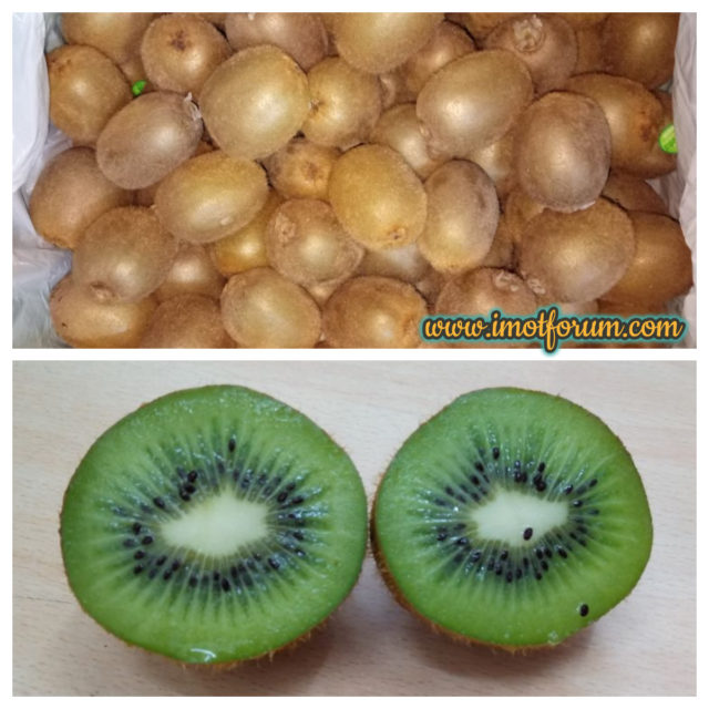 Eight Exotic Fruits In Indian Market That You Should Know About Part 1 Imot Agri Forum